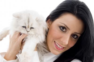 Cat Health: Wellness für die Katze