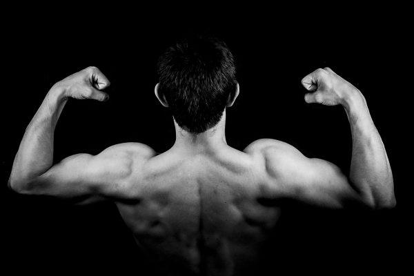 Fitnessplan für den Muskelaufbau